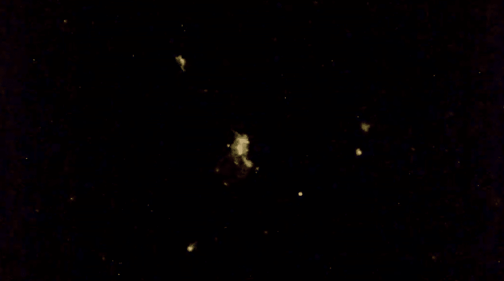ISS live streaming UFOs few days ago