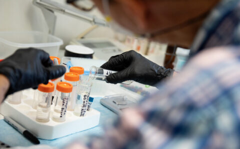 Scientists: How Has the Pandemic Changed Your Work?