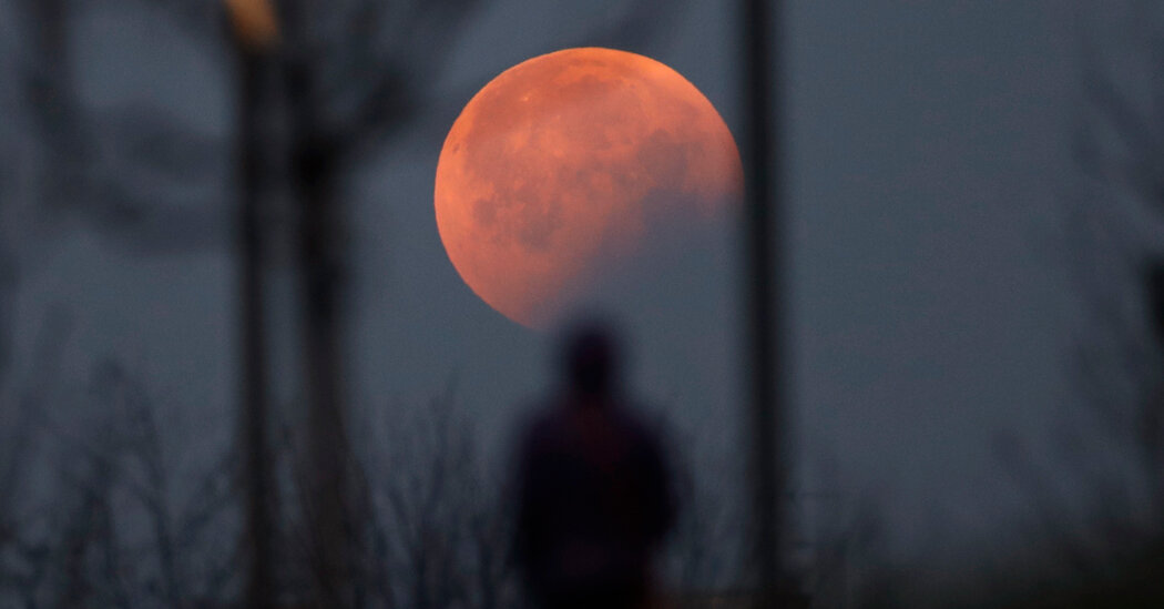 Watch a Lunar Eclipse, or at Least Try To