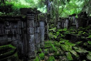 Many ancient artifacts found in the Amazon jungle