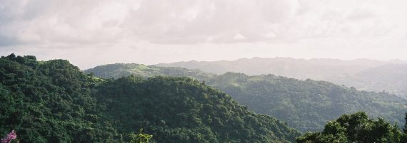 Puerto Rico: An Island Filled With More Monsters Than Just the Chupacabra – Mysterious Universe