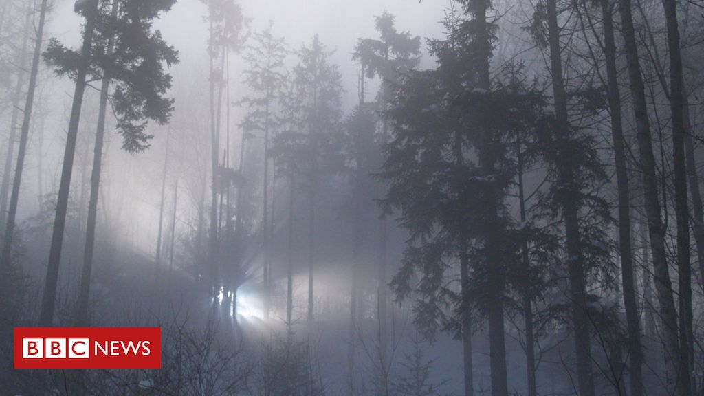 Rendlesham Forest UFO: Are We Any Closer to the Truth 40 Years On? – BBC News