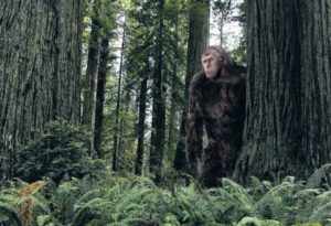 Superfast Bigfoot filmed by frightened witnesses in Russian forest