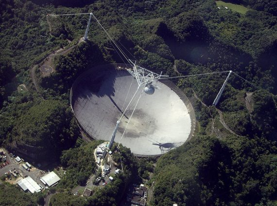 The Collapse of the Arecibo Observatory and a Strange, Blood-Draining Creature