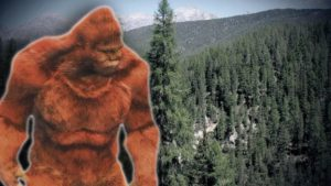 A group of people saw a Bigfoot and then discovered its huge footprints