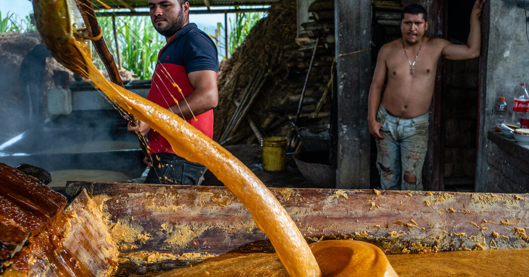 Colombians Ask: Who Would Dare Patent Panela?