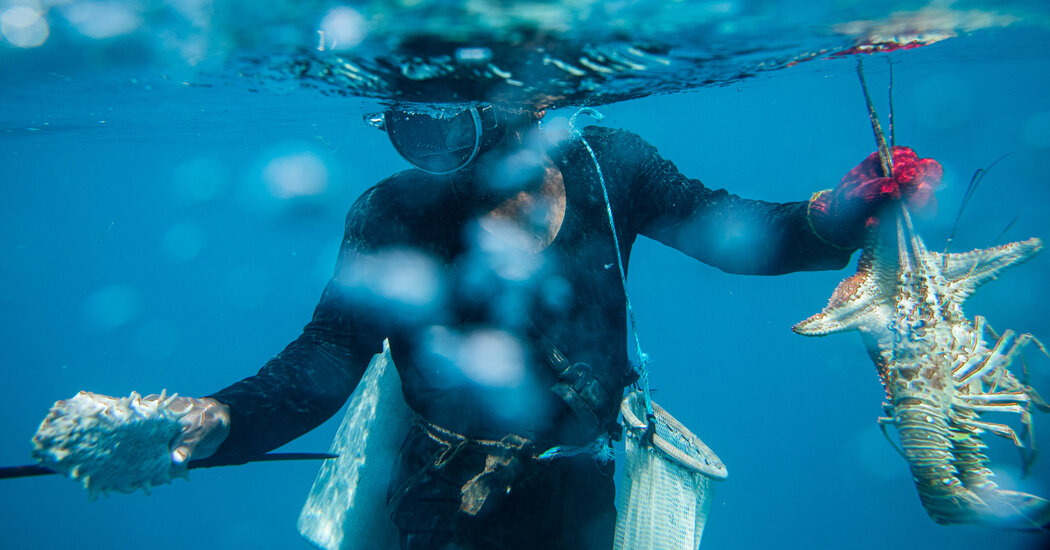 For Nicaragua's Lobstermen, Deadly Dives Are All Too Common