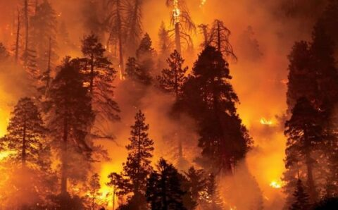 Giant Space Laser Conspiracies and California Wildfires