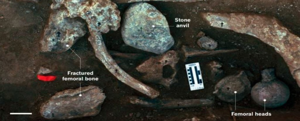 New Evidence Supports Controversial Claim of Humans in The Americas 130,000 Years Ago – Science Alert