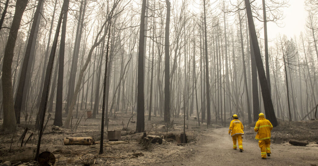 Rain and Snow Headed for Wildfire-Damaged Areas of California