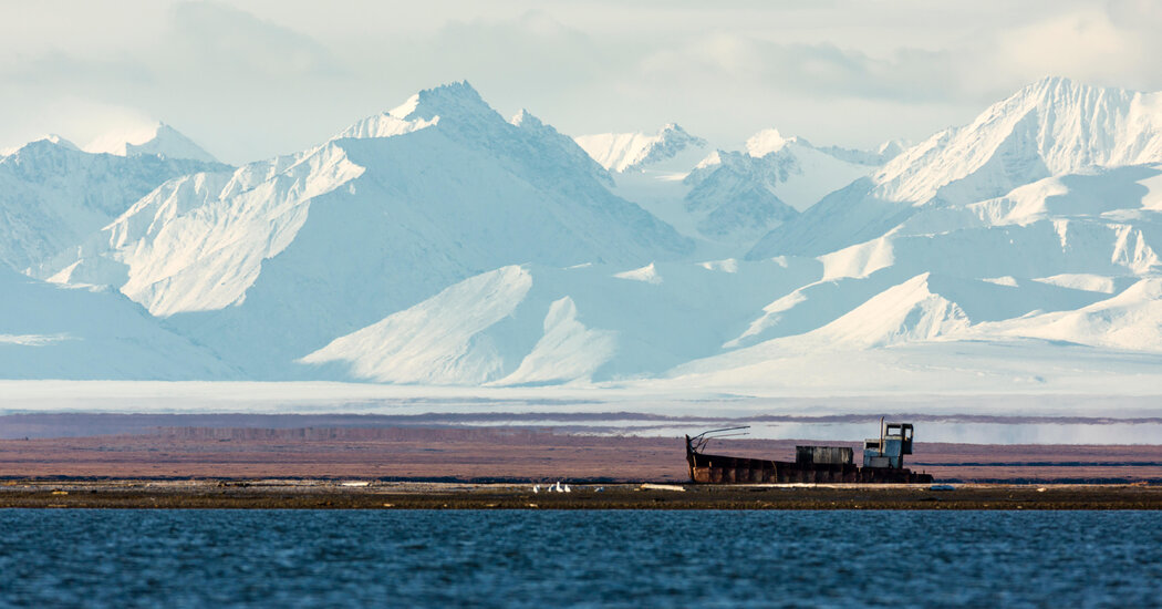 Sale of Drilling Leases in Arctic Refuge Fails to Yield a Windfall