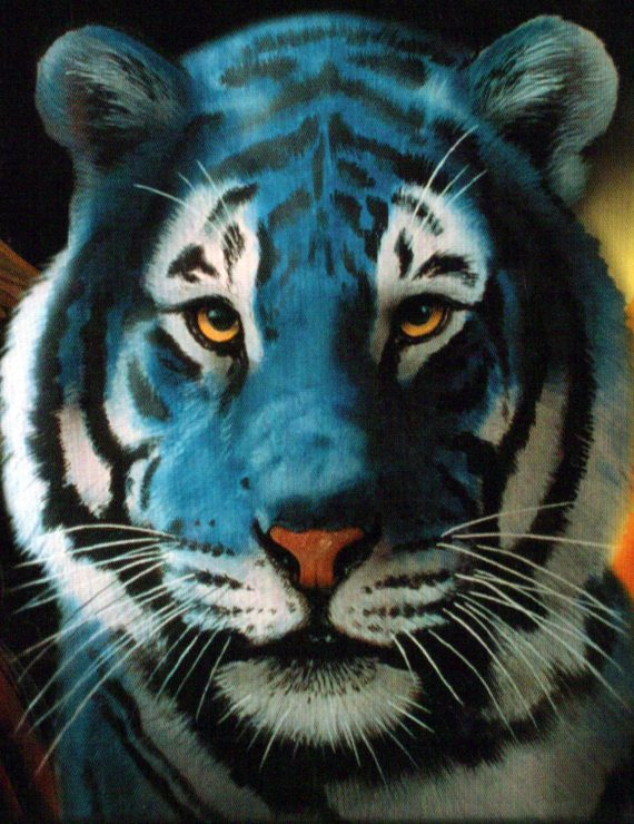 Tigers of Blue, Dilly Dilly…