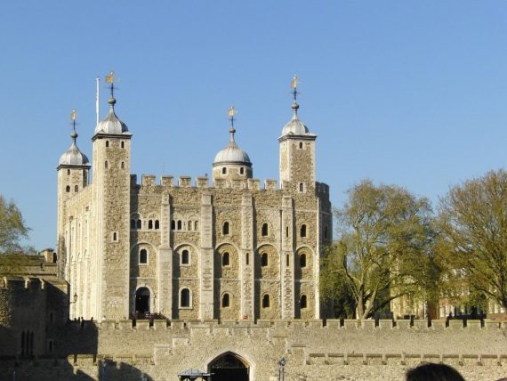 Tower of London Raven Feared Dead — Is Britain Doomed to Follow?