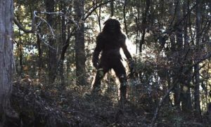 A video appeared on the network with the allegedly dead Bigfoot cub