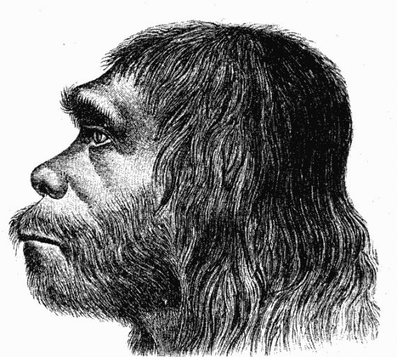 Ancient Teeth May Have Belonged to a Neanderthal/Homo Sapien Hybrid