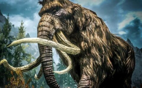 Creatures That May Have Lived Longer Than We Thought: The Mammoth, Part 1 – Mysterious Universe