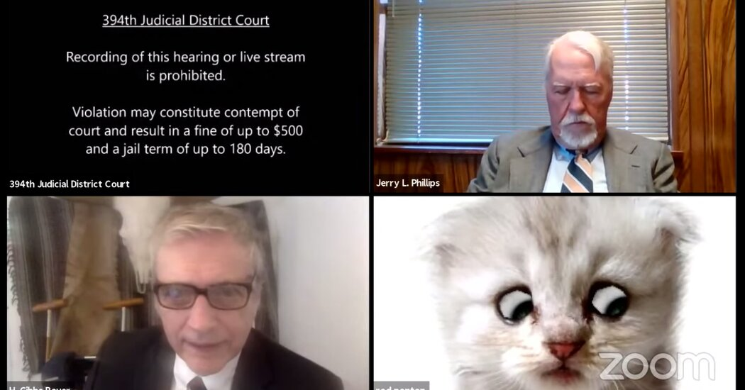 'I'm Not a Cat,' Says Lawyer Having Zoom Filter Difficulties