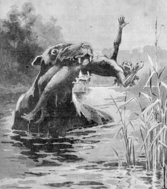 The Bunyip: Australia's Most Bizarre Mystery Monster