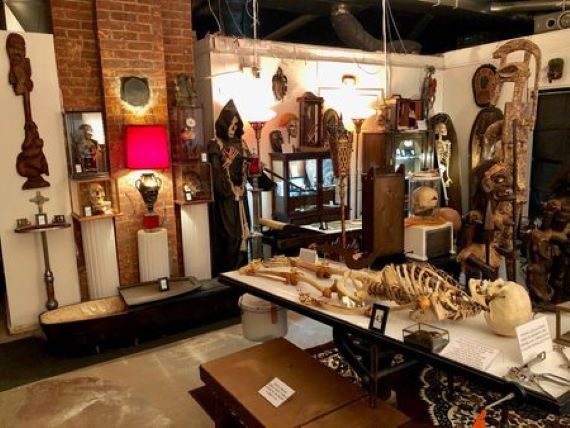 The Mysterious and Macabre Museum of Death