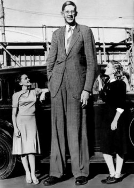 The Strange Life of the Tallest Man Who Ever Lived
