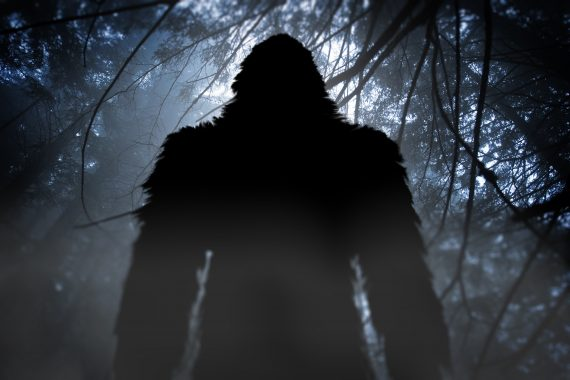 The Stranger Side of the Most Famous Monster: Bigfoot