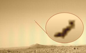 Alien-Bird or UFO? Mysterious flying object captured by Perseverance rover
