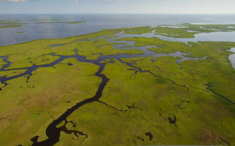 Big Step Forward for $50 Billion Plan to Save Louisiana Coast