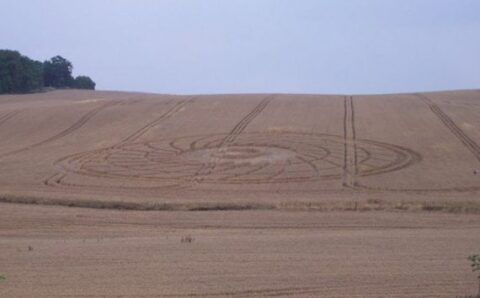 """Crop Circles: """"Missing Time"""" Experiences Within"""
