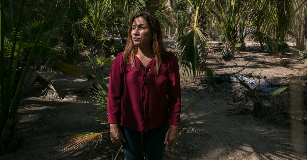 How Sexual Assault Allegations Have Divided Mexico's Governing Party