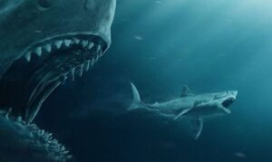 Megalodon was much larger than previously thought