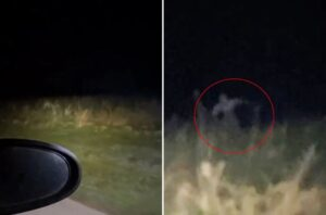 Skinwalker or other creepy being caught on video in rural area