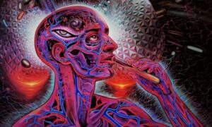 The Mysteries of DMT: Gateway to Reality, Other Dimensions or What?