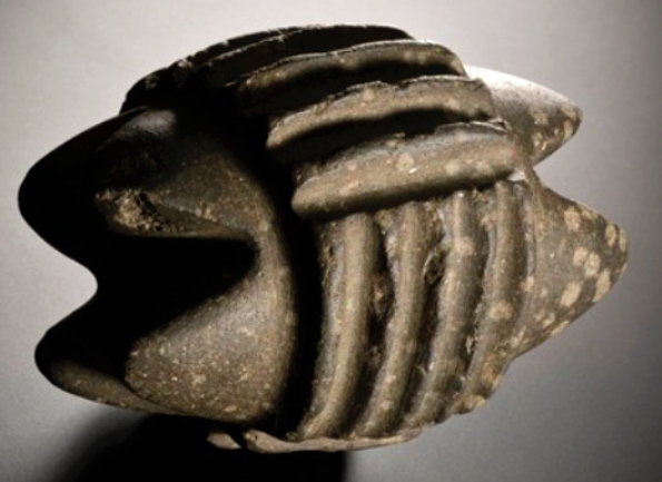 The Skara Brae Artefacts: Who Made Them, and Why? – Daily Grail