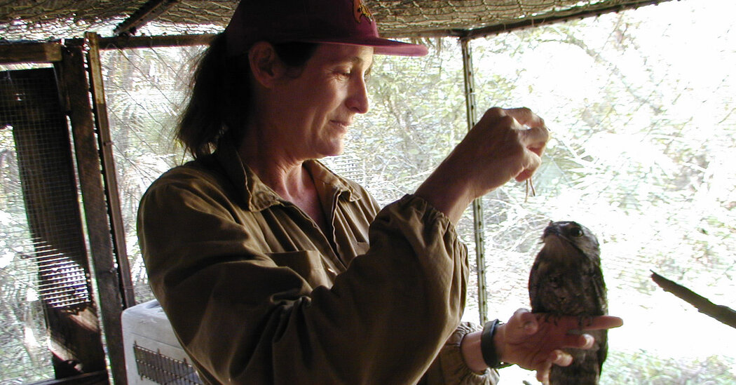 Sharon Matola, Who Opened a Zoo in the Jungle of Belize, Dies at 66