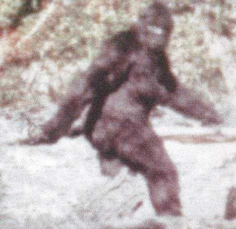This Is the Story of US Troops Who Think They Saw Bigfoot in Vietnam – We Are The Mighty