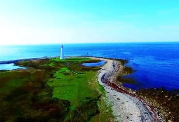 The Menacing Sea Monsters of Canada's Cape Sable Island