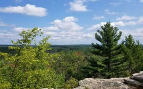 The Strange and Very Haunted Pachaug State Forest of Connecticut