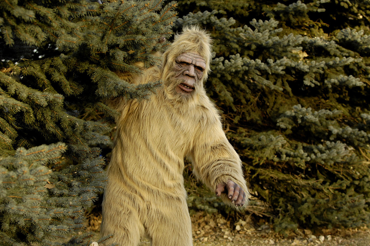 Bigfoot in the Amarillo and Panhandle Area? Oh Yeah, It's Real… We Think – Mix 94.1