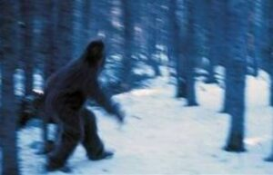 Wildmen of The Himalayas: Encounters With Yeti