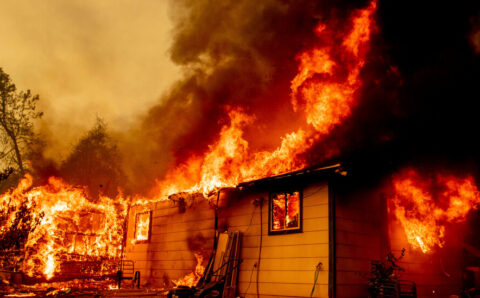 California Woman Charged With Arson in Starting Fawn Fire