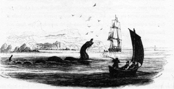 Monsters of the Oceans and Their Need to Feed and Kill – Mysterious Universe