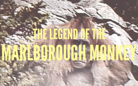'The Legend of the Marlborough Monkey' is Vintage Fun for Cryptid Fans – Singular Fortean