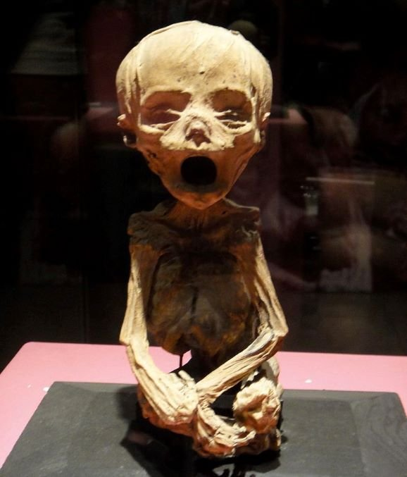 The Mysterious Mummies of Guanajuato and Their Haunted Museum